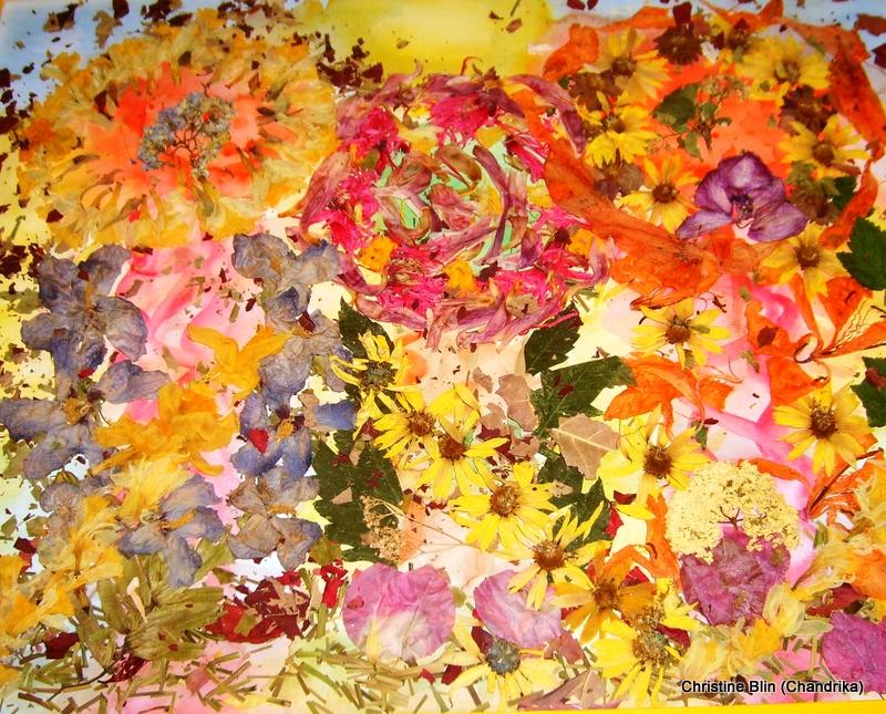 Eveil du printemps acrylique et fleurs sechees 47 5 x 57 5 cm